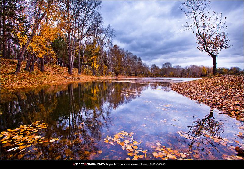 Осенние зарисовки. Фотограф Доронченко Андрей, Новокузнецк.